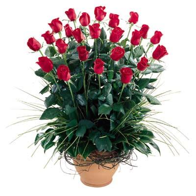 Konya çiçekçi telefonları  10 adet kirmizi gül cam yada mika vazo