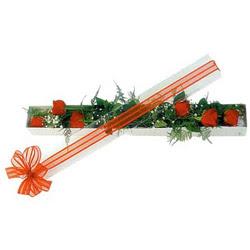 Konya güvenli kaliteli hızlı çiçek  6 adet kirmizi gül kutu içerisinde