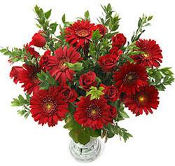 5 adet kirmizi gül 5 adet gerbera aranjmani  Konya çiçek mağazası , çiçekçi adresleri
