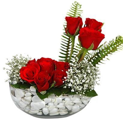 cam içerisinde 9 adet kirmizi gül  Konya İnternetten çiçek siparişi