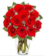 12 adet vazoda kıpkırmızı gül  Konya çiçek yolla