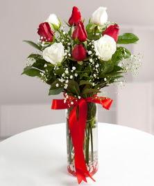 5 kırmızı 4 beyaz gül vazoda  Konya çiçek gönderme