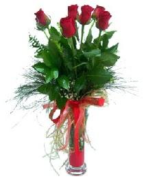 vazo içerisinde 5 kırmızı gül  Konya çiçekçiler