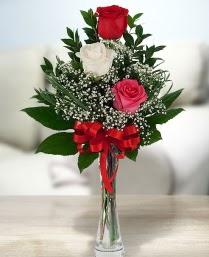 Camda 2 kırmızı 1 beyaz gül  Konya çiçek servisi , çiçekçi adresleri
