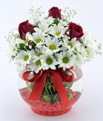 Fanusta 3 Gül ve Papatya  Konya yurtiçi ve yurtdışı çiçek siparişi