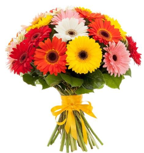 Gerbera demeti buketi  Konya hediye sevgilime hediye çiçek