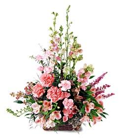 Konya çiçek servisi , çiçekçi adresleri  mevsim çiçeklerinden özel