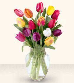 Konya online çiçekçi , çiçek siparişi  13 adet cam yada mika vazoda laleler