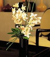 Konya online çiçekçi , çiçek siparişi  cam yada mika vazo içerisinde dal orkide