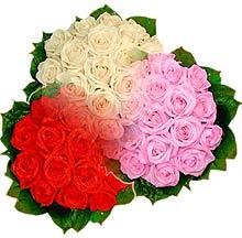 3 renkte gül seven sever   Konya çiçek online çiçek siparişi
