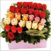 15 adet renkli gül ve cam   Konya kaliteli taze ve ucuz çiçekler
