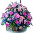 karisik mevsim kir çiçekleri  Konya cicekciler , cicek siparisi