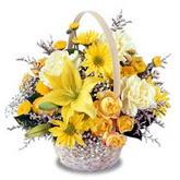 sadece sari çiçek sepeti   Konya cicekciler , cicek siparisi
