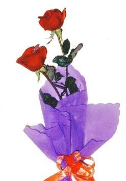 2  adet kirmizi gül buketi   Konya çiçek online çiçek siparişi