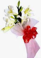 Konya çiçek online çiçek siparişi  ince vazoda gerbera ve ayi