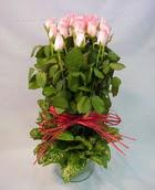 13 adet pembe gül silindirde   Konya uluslararası çiçek gönderme