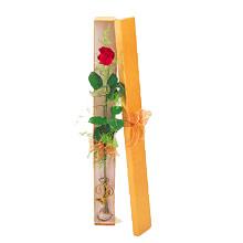 ince  kutuda  1  gül   Konya uluslararası çiçek gönderme