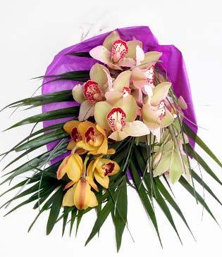 Konya çiçek gönderme  1 adet dal orkide buket halinde sunulmakta