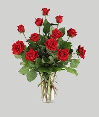 Konya çiçek gönderme  11 adet kirmizi gül vazo halinde