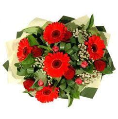 Konya çiçek servisi , çiçekçi adresleri   5 adet kirmizi gül 5 adet gerbera demeti