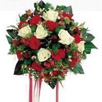Konya çiçek servisi , çiçekçi adresleri  6 adet kirmizi 6 adet beyaz ve kir çiçekleri buket