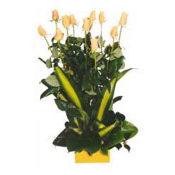 12 adet beyaz gül aranjmani  Konya internetten çiçek satışı