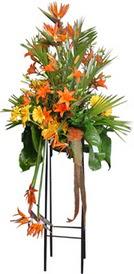 Konya güvenli kaliteli hızlı çiçek  perförje tanzimi dügün nikah ve açilislara
