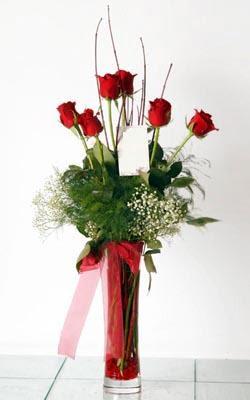 Konya çiçek gönderme  6 adet kirmizi gül ve cam yada mika vazo