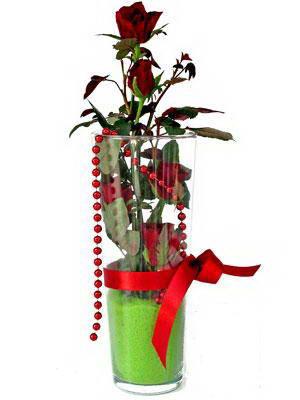 Konya çiçek gönderme sitemiz güvenlidir  Cam yada mika içerisinde 9 adet kirmizi gül - sevdiklerinize özel