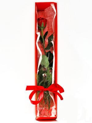 Konya internetten çiçek siparişi  1 adet kutuda gül