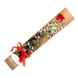 Konya çiçek online çiçek siparişi  Kutuda tek 1 adet kirmizi gül çiçegi