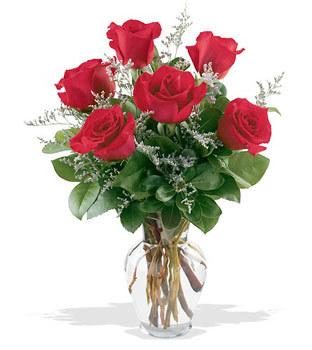 Konya çiçek gönderme  cam yada mika vazoda 6 adet kirmizi gül