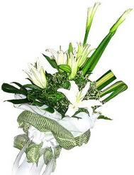 Konya çiçekçiler  3 dal kazablanka çiçegi ve yesillikler