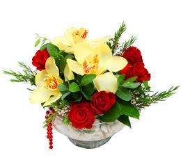 Konya 14 şubat sevgililer günü çiçek  1 adet orkide 5 adet gül cam yada mikada