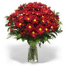 Konya uluslararası çiçek gönderme  Kir çiçekleri cam yada mika vazo içinde
