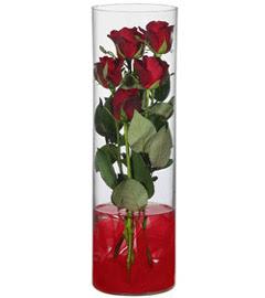 cam içerisinde 7 adet kirmizi gül  Konya online çiçekçi , çiçek siparişi