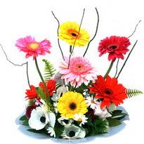 Konya çiçek mağazası , çiçekçi adresleri  camda gerbera ve mis kokulu kir çiçekleri