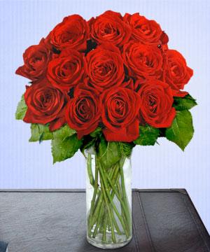 Anneme 12 adet cam içerisinde kirmizi gül  Konya güvenli kaliteli hızlı çiçek