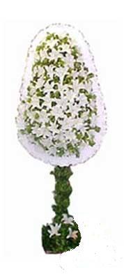 Konya güvenli kaliteli hızlı çiçek  nikah , dügün , açilis çiçek modeli  Konya çiçek gönderme sitemiz güvenlidir