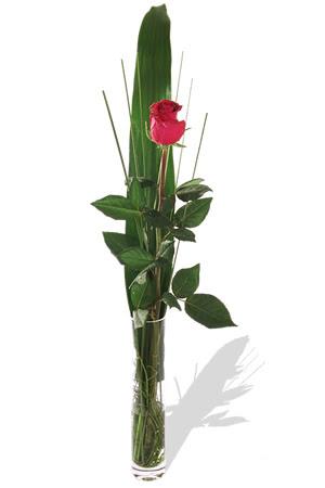 1 adet cam vazo içerisinde kirmizi gül  Konya çiçek online çiçek siparişi