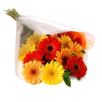 Karisik renklerde gerbera buketi  Konya çiçek gönderme