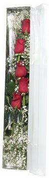 Konya güvenli kaliteli hızlı çiçek   5 adet gülden kutu güller