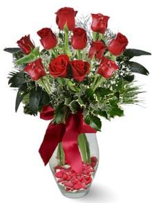 9 adet gül  Konya yurtiçi ve yurtdışı çiçek siparişi  kirmizi gül