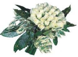 Konya çiçek yolla , çiçek gönder , çiçekçi   9 Beyaz gül Özel kisiler için