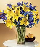 Konya çiçek , çiçekçi , çiçekçilik  Lilyum ve mevsim  çiçegi özel