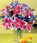 Konya çiçek siparişi sitesi  Sevgi bahçesi Özel  bir tercih