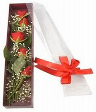 kutu içinde 5 adet kirmizi gül  Konya çiçek yolla , çiçek gönder , çiçekçi