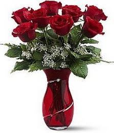 Vazo içinde 8 adet kirmizilar içinde güller  Konya çiçek yolla , çiçek gönder , çiçekçi