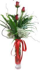 Konya güvenli kaliteli hızlı çiçek  3 adet kirmizi gül vazo içerisinde