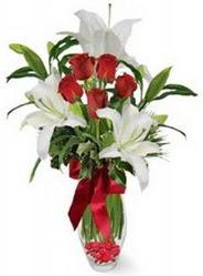 Konya İnternetten çiçek siparişi  5 adet kirmizi gül ve 3 kandil kazablanka